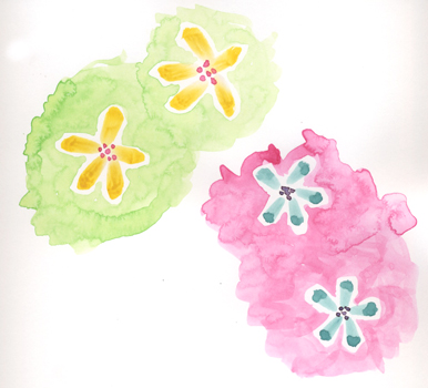 flowers on pink and green