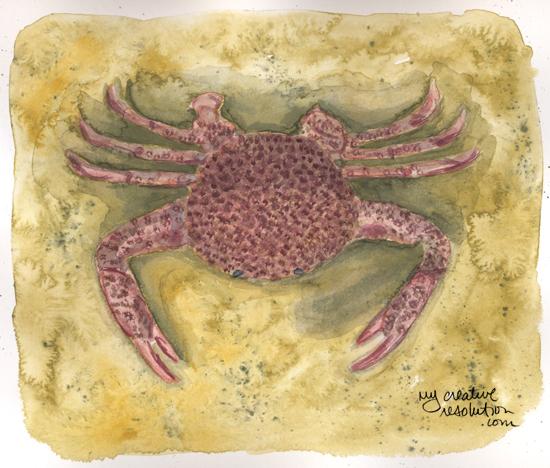 crabfinal