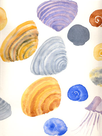 shellswatercolor-1