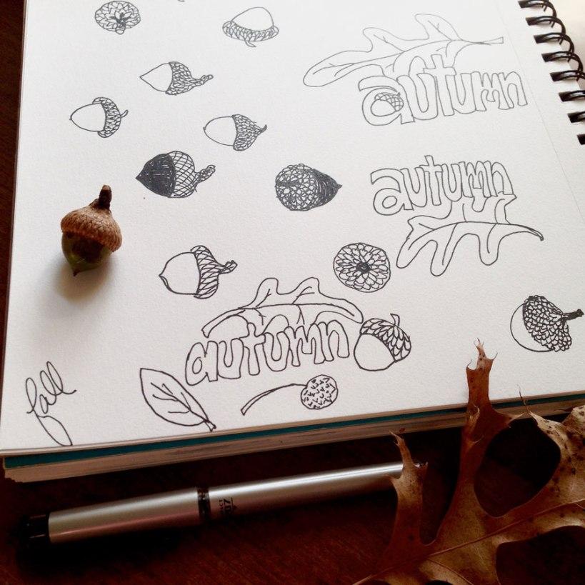 acornsketches