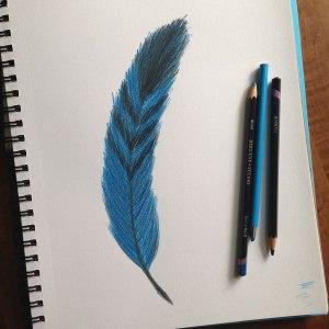 pencilfeather