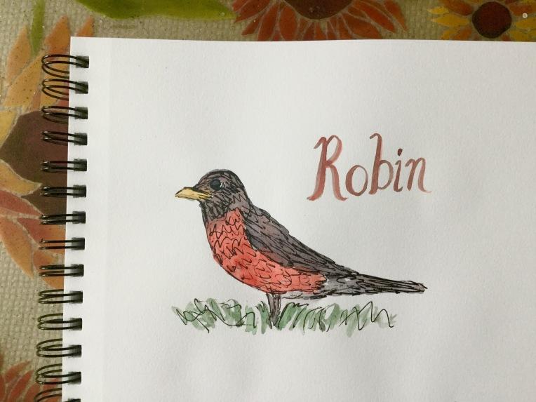 Watercolor robin in my sketchbook