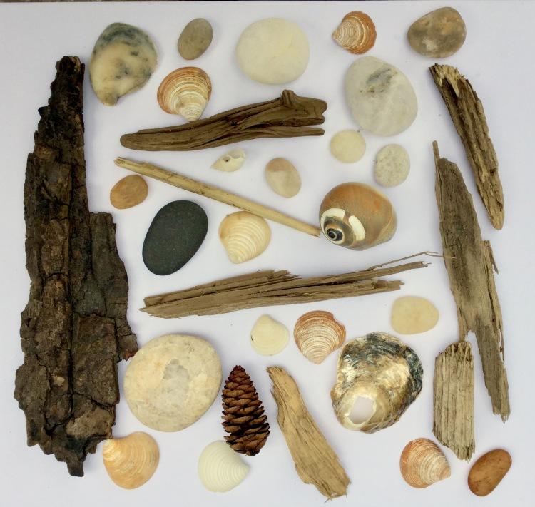 Beach treasures found near the Fire Island Lighthouse