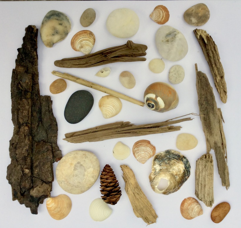 Beach treasures found near the Fire Island Lighthouse