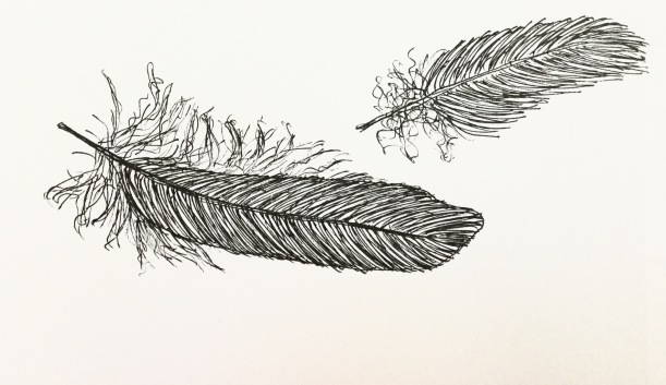 Feathers in my sketchbook. 20 days of drawing consecutively.