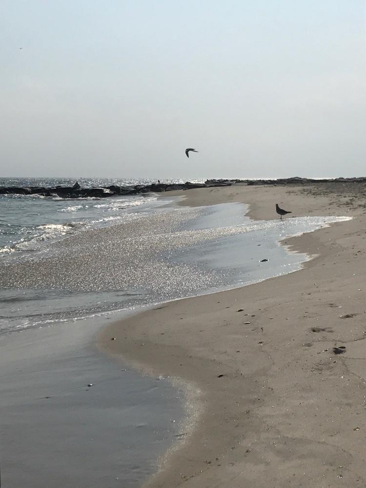 Beach Day by Eileen McKenna http://www.mycreativeresolution.com