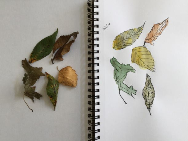 InkTober day 1 leaves
