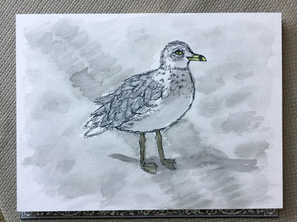 InkTober day 3 seagull