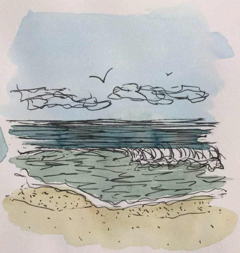 Seascape watercolor and ink illustration by Eileen McKenna #inktober