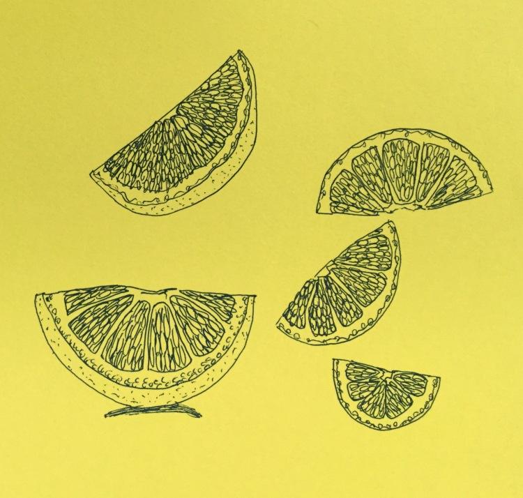 Lemon slices by Eileen McKenna #inktober #lemons #yellow