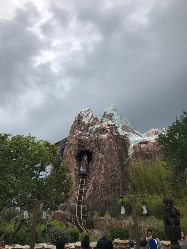 Everest Expedition roller coaster at Animal Kingdom