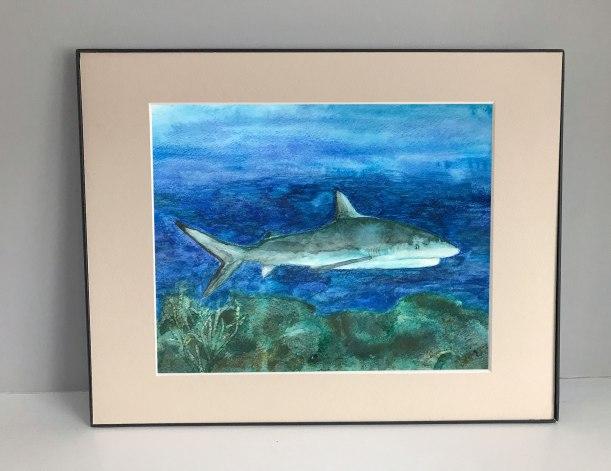 Shart art print   sea life decor ocean decor