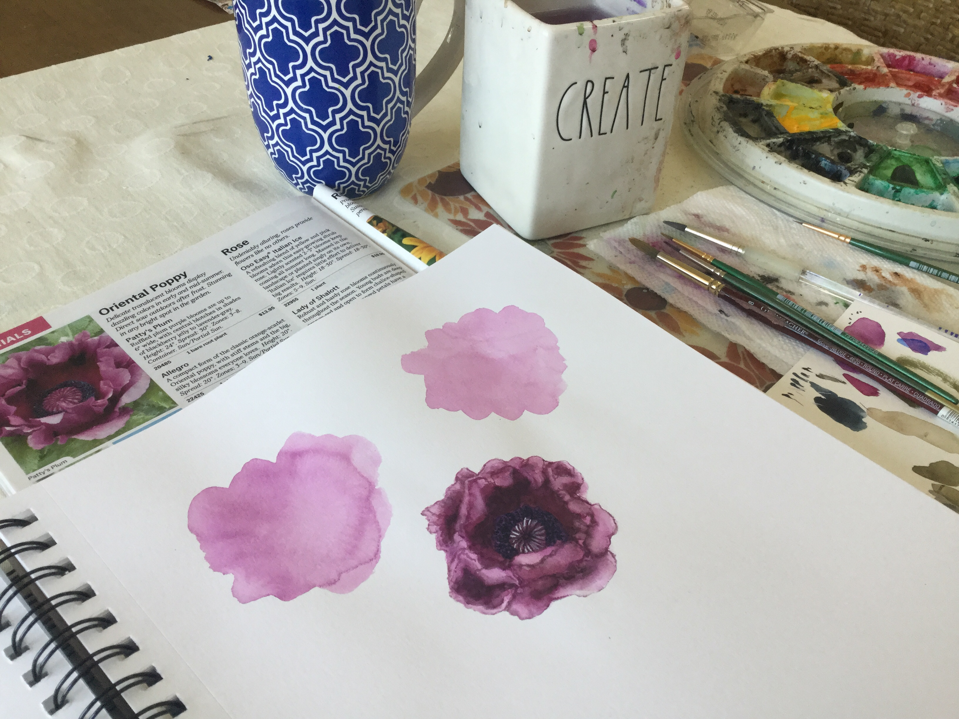 Painting a poppy in watercolor | my watercolor setup