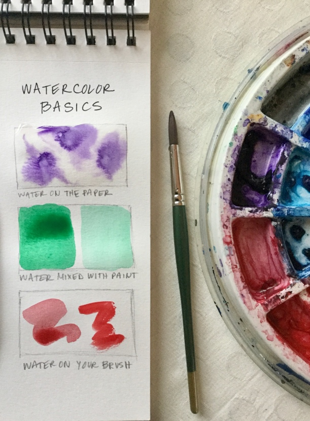Watercolor Basics for beginners